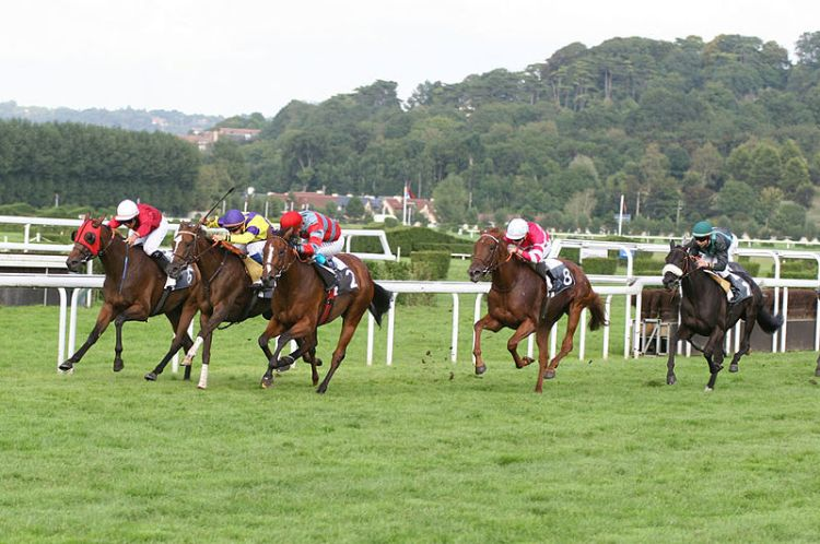 Deauville-Clairefontaine_galop