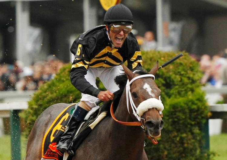 Oxbow with jockey Stevens in the irons takes first place at the 138th running of the Preakness Stakes at Pimlico Race Course in Baltimore