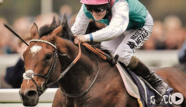 frankel-qipco-champion-stakes