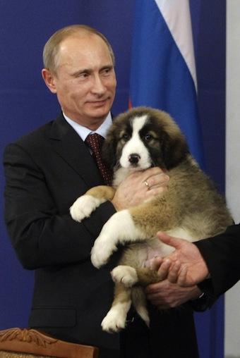 Vladimir Putin, Boiko Borisov