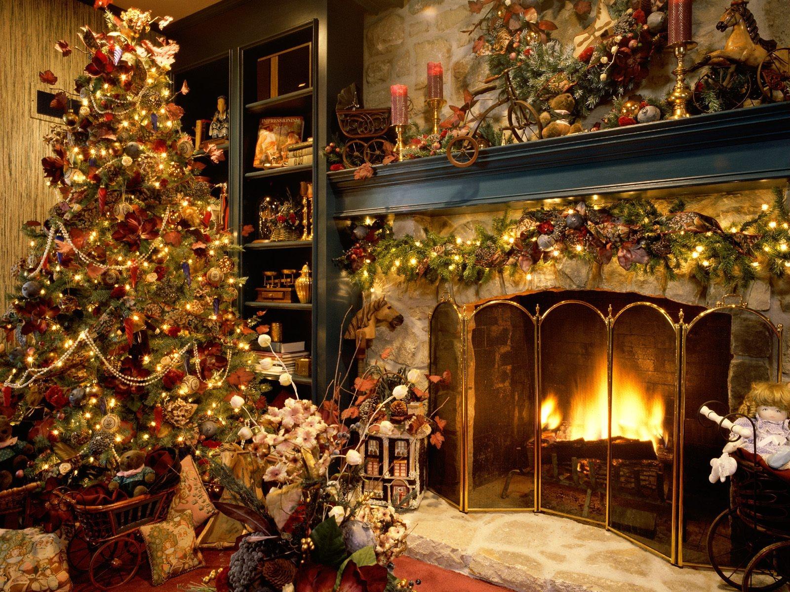 fanny dynamic beautiful christmas - photo #2
